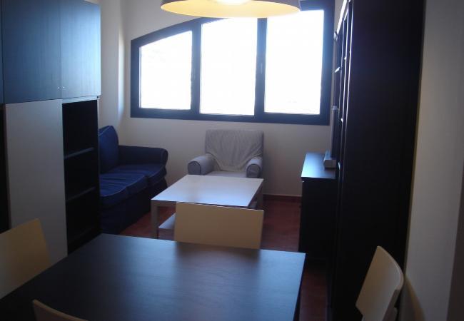 Apartamento en Sierra Nevada - Oiz I 4ºJ C4 cod.101