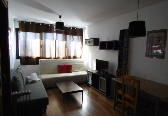 Apartamento en Sierra Nevada - Oiz II 0ºK-E4-Cod.104